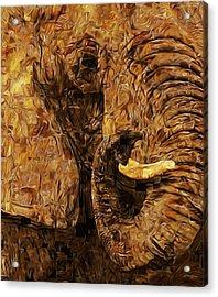 Tusk - Happened At The Zoo Acrylic Print by Jack Zulli