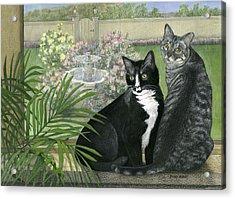 Tuxedo And Tabby Acrylic Print