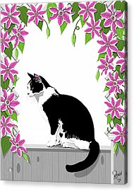 Tuxedo Cat And Clematis Acrylic Print by Artellus Artworks