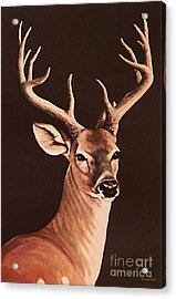 Acrylic Print featuring the painting Twelve Pointer by DiDi Higginbotham