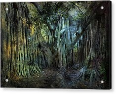 Twilight Deep In Florida Acrylic Print by Evie Carrier