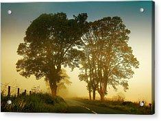 Twilight Guardians. Misty Roads Of Scotland Acrylic Print by Jenny Rainbow