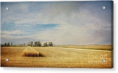 Twilight Harvest Acrylic Print