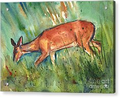 Twilight Acrylic Print by Maria's Watercolor