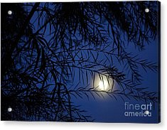 Twilight Moon Acrylic Print