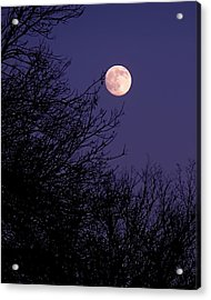Twilight Moon Acrylic Print by Rona Black