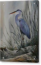 Twilight Shore Acrylic Print by James Williamson