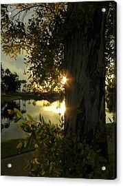 Acrylic Print featuring the photograph Twilight Splendor by Deb Halloran