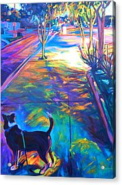 Scout At Twilight Acrylic Print