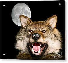 Twilight's Full Moon Acrylic Print