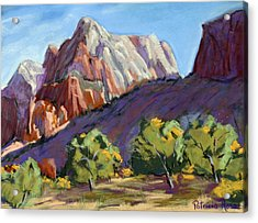 Twin Brothers Vista Acrylic Print by Patricia Rose Ford