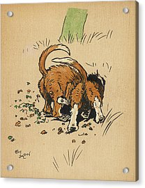 Twin Puppies, Snip And Snap,  Try Acrylic Print by Mary Evans Picture Library
