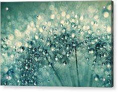 Acrylic Print featuring the photograph Twinkle In Blue II by Sharon Johnstone