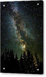 Twinkle Twinkle A Million Stars  Acrylic Print