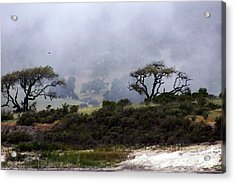 Twins In  The Fog Acrylic Print by Gary Brandes