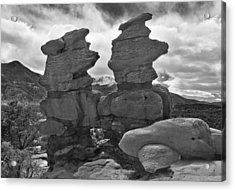 Acrylic Print featuring the photograph Twin Toadstools by Mae Wertz