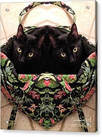 Acrylic Print featuring the photograph Twins by Luther Fine Art