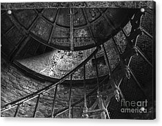 Twisted Acrylic Print by Amanda Sinco