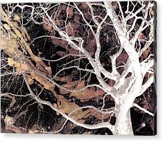 Twisted Dance - Dark Dreams Acrylic Print by Shawna Rowe