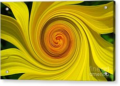 Twisted Acrylic Print by Janice Westerberg