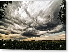 Twisted Sky Acrylic Print