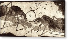 Two Ants In Communication - Etching Acrylic Print