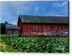 Two Barns Ready Acrylic Print by Rick Bragan