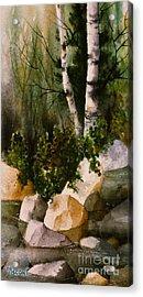 Two Birch By Rocky Stream Acrylic Print