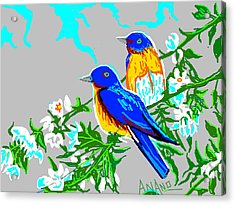 Two Birds Acrylic Print by Anand Swaroop Manchiraju