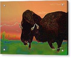 Two Bison Acrylic Print by Kae Cheatham