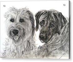 Two Dog Night Acrylic Print