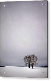 Two Acrylic Print by Evelina Kremsdorf