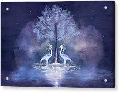 Two Fabulous Herons Acrylic Print