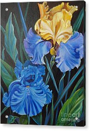 Two Fancy Iris Acrylic Print