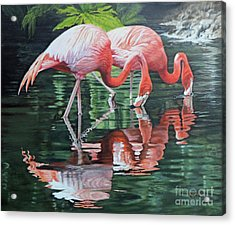 Acrylic Print featuring the painting Two Flamingos by Jimmie Bartlett
