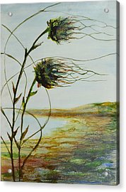 Two Flowers By The Bay Acrylic Print