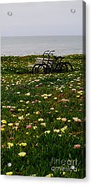 Acrylic Print featuring the photograph Two For The Road 2 by Theresa Ramos-DuVon