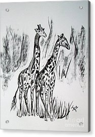 Acrylic Print featuring the drawing Two Giraffe's In Graphite by Janice Rae Pariza