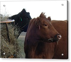 Acrylic Print featuring the photograph Two Girls by J L Zarek