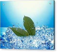 Two Green Leaves In Bubbling Water Acrylic Print