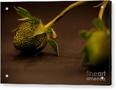 Two Green Strawberries Acrylic Print by Patricia Bainter