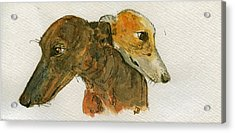 Two Greyhounds Acrylic Print by Juan  Bosco