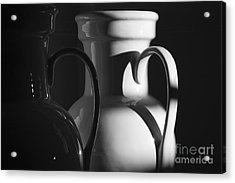 Two In Black And White Acrylic Print by Terry Rowe