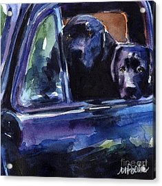 Two Into Fifty One Acrylic Print by Molly Poole