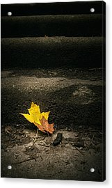 Two Leaves On A Staircase Acrylic Print by Scott Norris