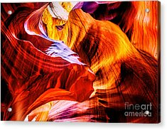 Two Lions Dance Acrylic Print by Az Jackson