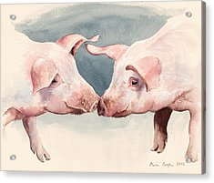 Two Little Piggies Acrylic Print