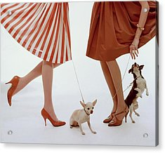 Two Models With Dogs Acrylic Print