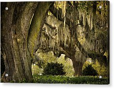 Two Oaks Acrylic Print by Denis Lemay