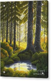 Two Old Spruce Acrylic Print by Veikko Suikkanen